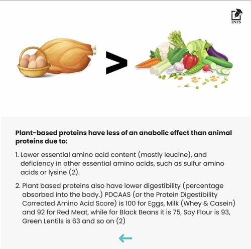 Plant Based Protein For Muscle Gain
