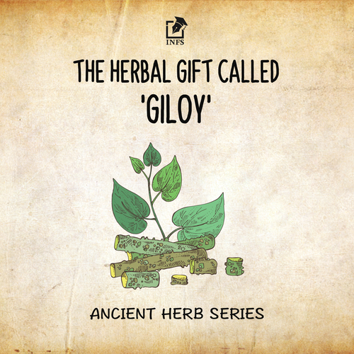 The Herbal Gift Called 'Giloy'