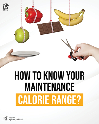 How to know your maintenance calorie range?