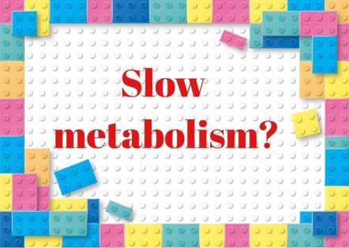 FIXING YOUR METABOLISM
