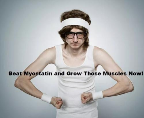 How to beat Myostatin – The Physiological Restrictor