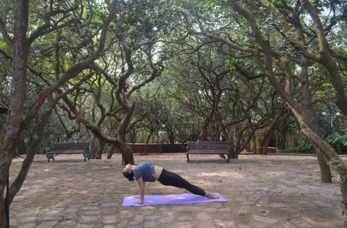 Yoga Series – Purvottanasana (Upward facing plank pose)