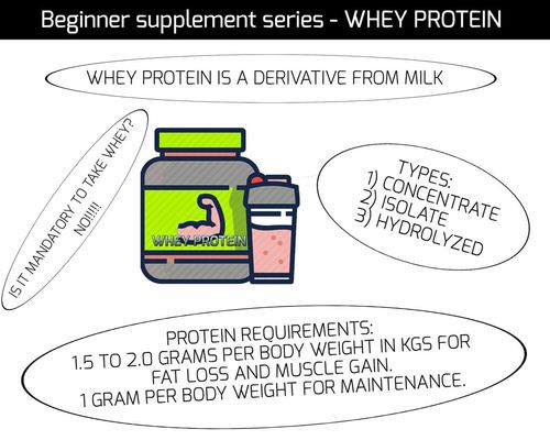 BEGINNER SUPPLEMENT SERIES - WHEY PROTEIN