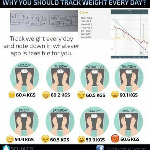 Why you should track weight every day