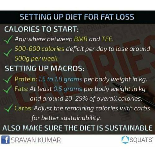 Setting up the diet for fat loss
