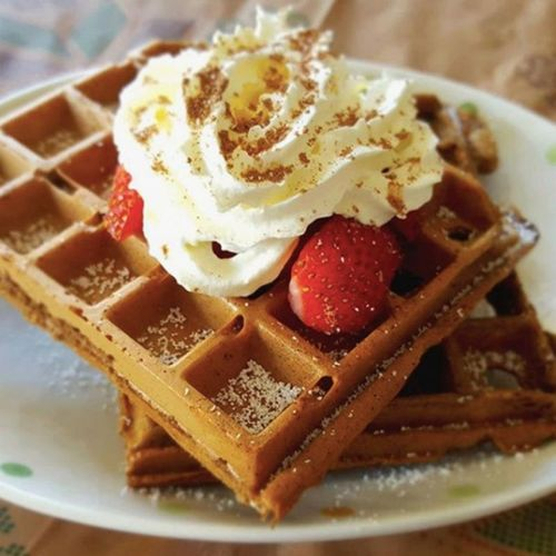 Chocolate Whey Waffles