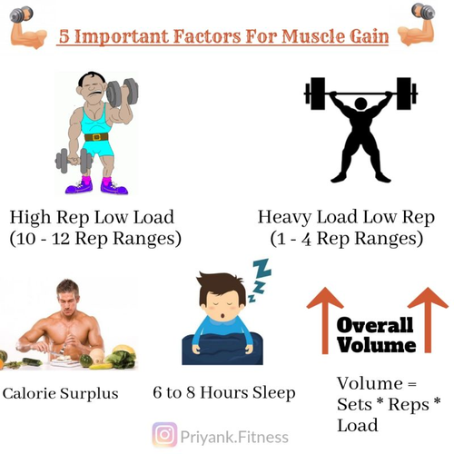 💪 - - - -   5 IMPORTANT FACTORS FOR MUSCLE GAIN   - - 💪