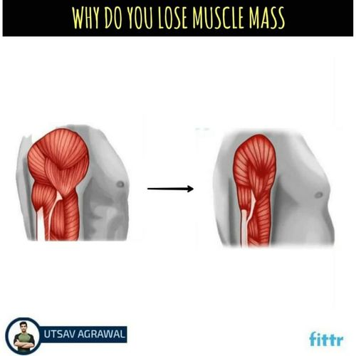 Why do you lose muscle mass