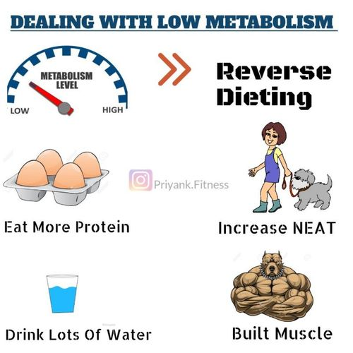 DEALING WITH LOW METABOLISM
