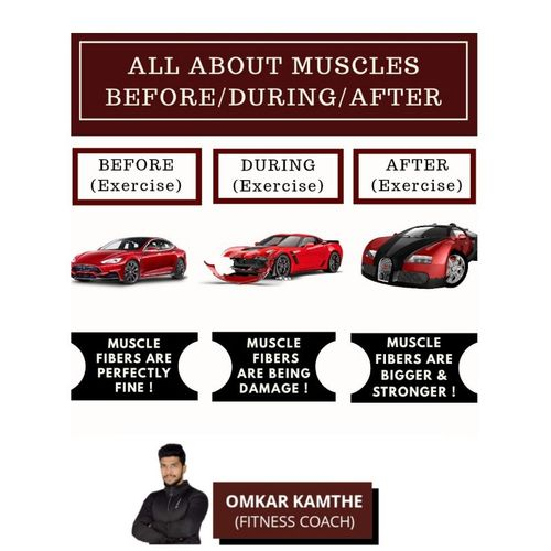 ALL ABOUT MUSCLES (Before/ After / During Exercise)