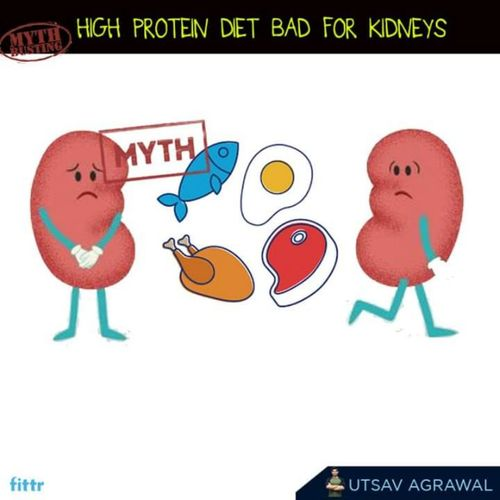 High Protein diet bad for kidneys - MYTH BUSTING
