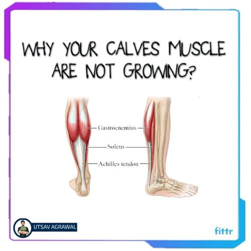 Why your calves are not growing ?