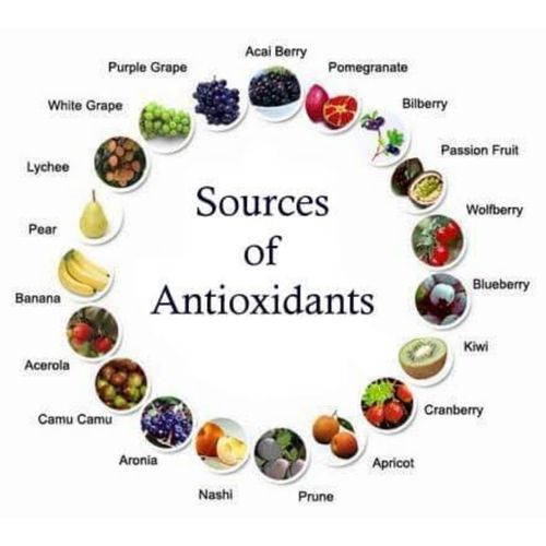 The Role of Antioxidant