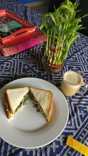 tuna waldrof sandwich