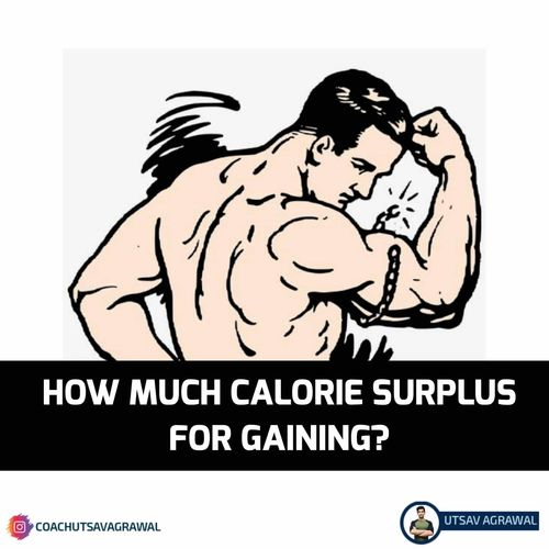 How much calorie surplus for gaining?