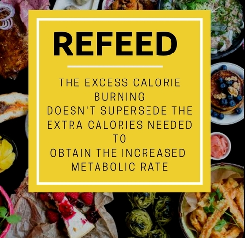 WILL REFEED MAKE YOU LOSE WEIGHT?