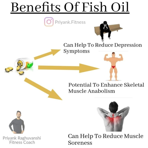 BENEFITS OF TAKING FISH OIL AND ITS ALTERNATIVE FOR VEGETARIANS