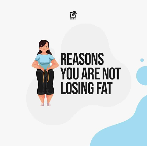 Reasons You Are Not Losing Fat