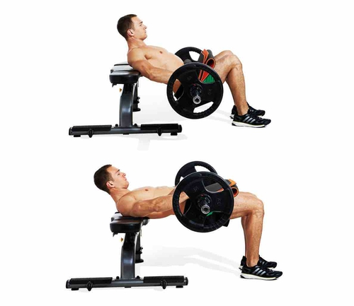 Squat Vs. Hip thrusts