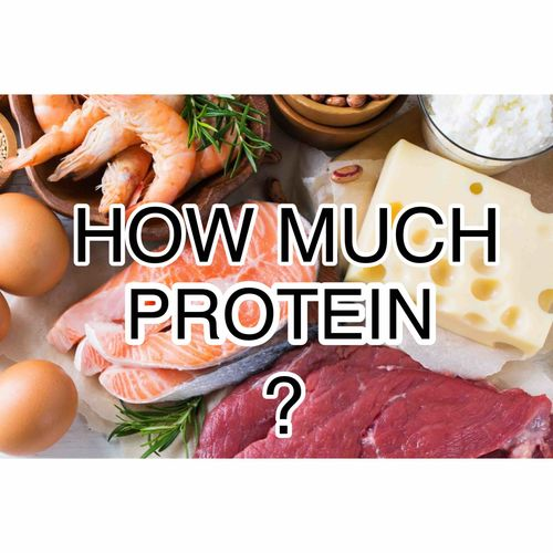 Protein intake for muscle growth  =========================