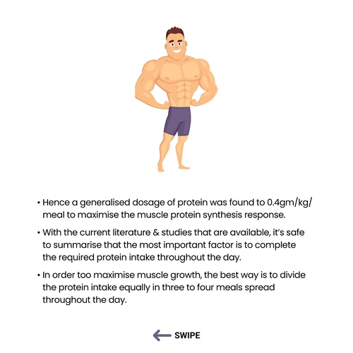 Protein Intake and Timing to Maximise Muscle Growth