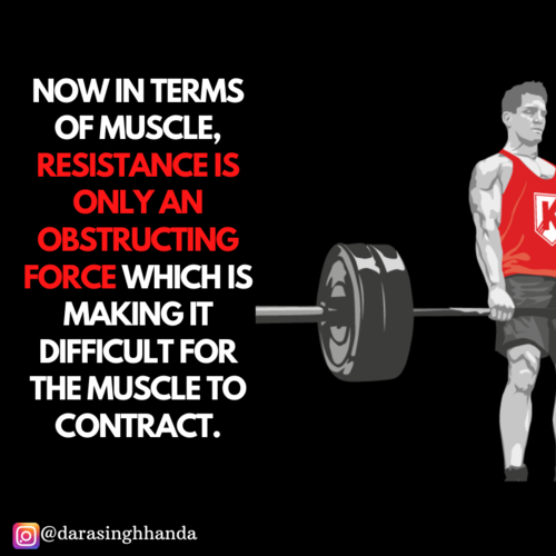 Are Barbell, dumbbells and machines necessary to gain muscle?
