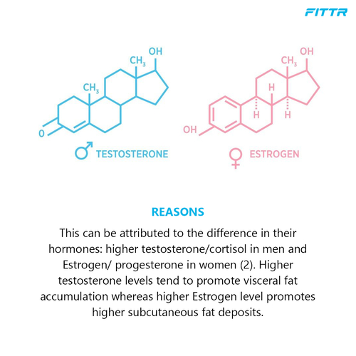How does fat distribution work in men and women, and how does it differ based on gender?
