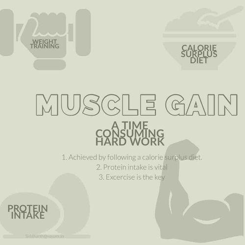 MUSCLE GAINS HACKS