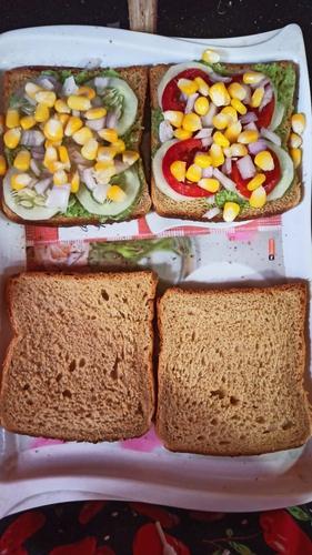 healthy veggies sandwich