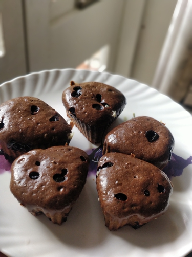 Whey protein cup cakes without oven