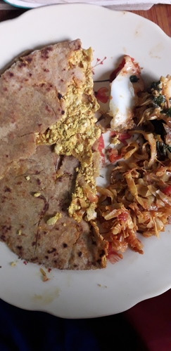 Paneer stuffed soya paratha